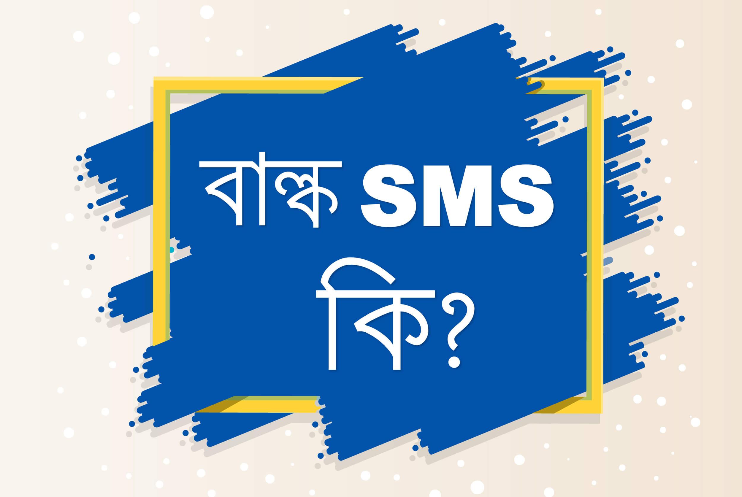 Bulk SMS কি? এবং কিভাবে SMS মার্কেটিং করবেন?